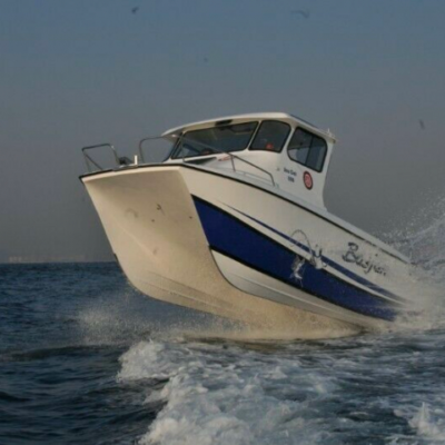 Sea Cat 800 Cabin